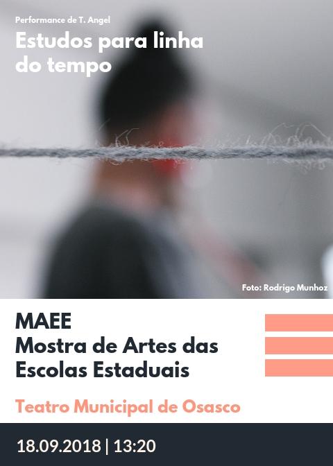 MAEEMostra de Artes das Escolas Estaduais - Osasco